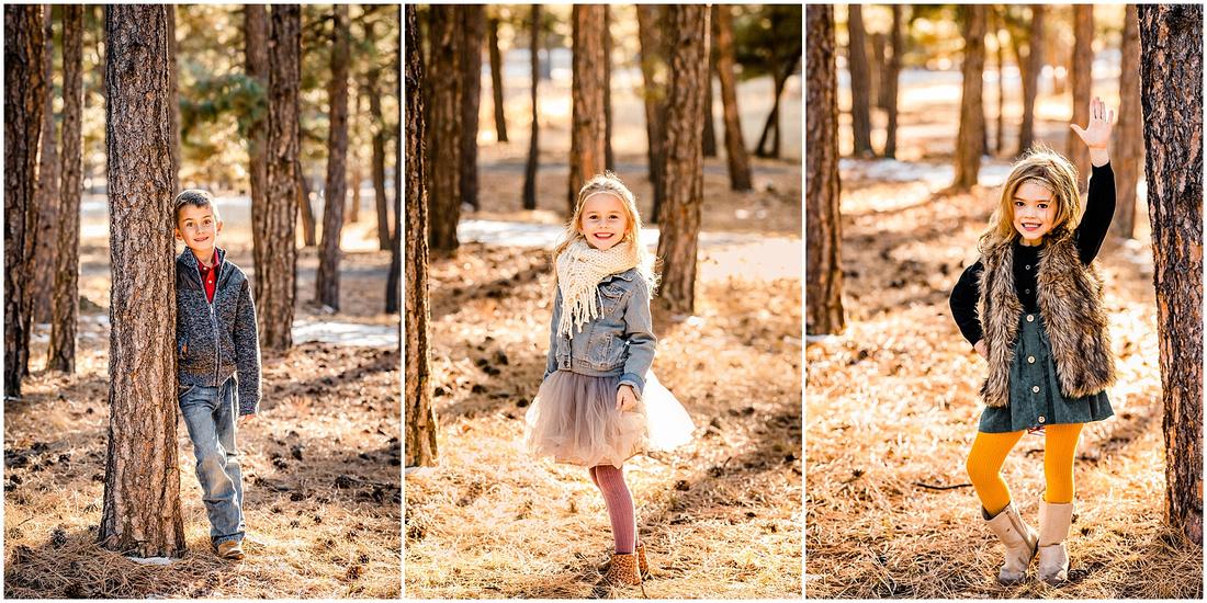 Family photos with 4 kids in a forest in Kiowa, Colorado